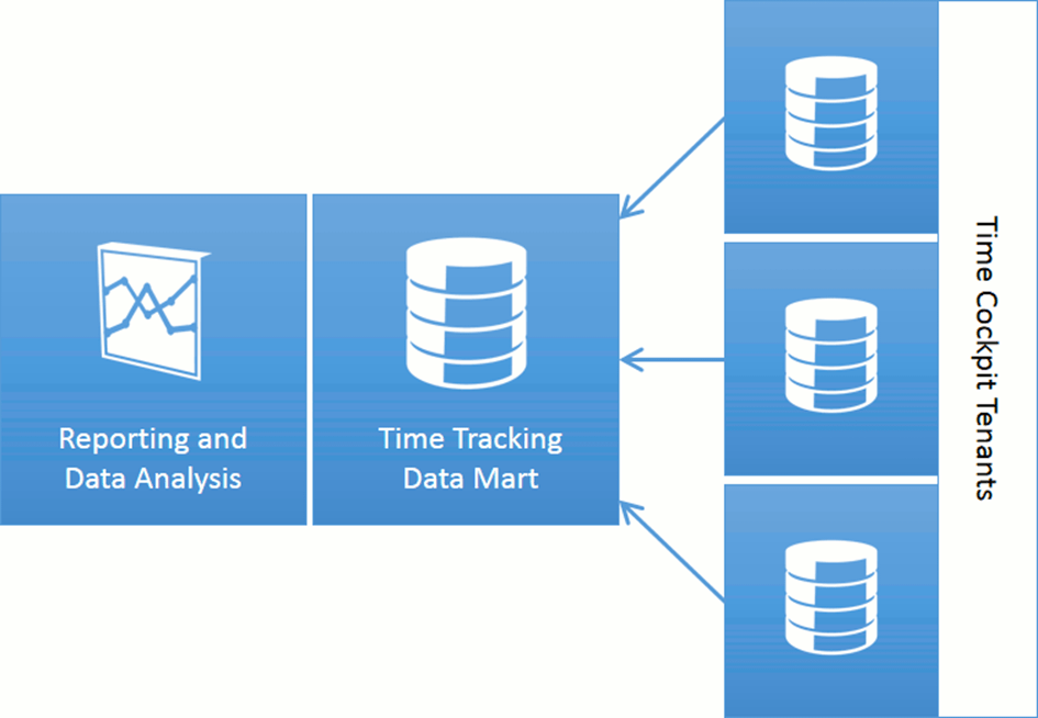 Time Tracking Reports with SQL Server Reporting Services and Microsoft Office Excel Power Pivot for Time Cockpit